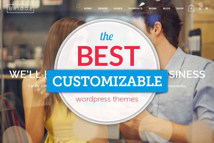 best super customizable wordpress themes