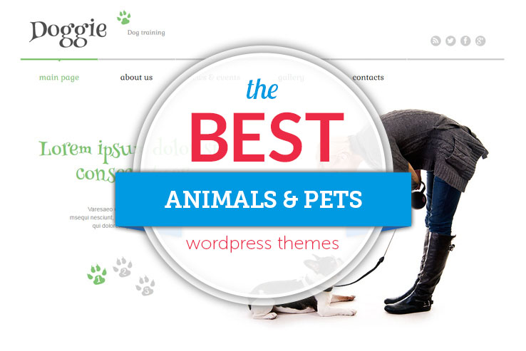 best pets wordpress themes