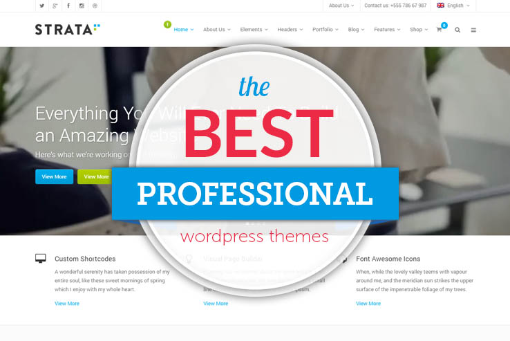 best professional wordpress themes
