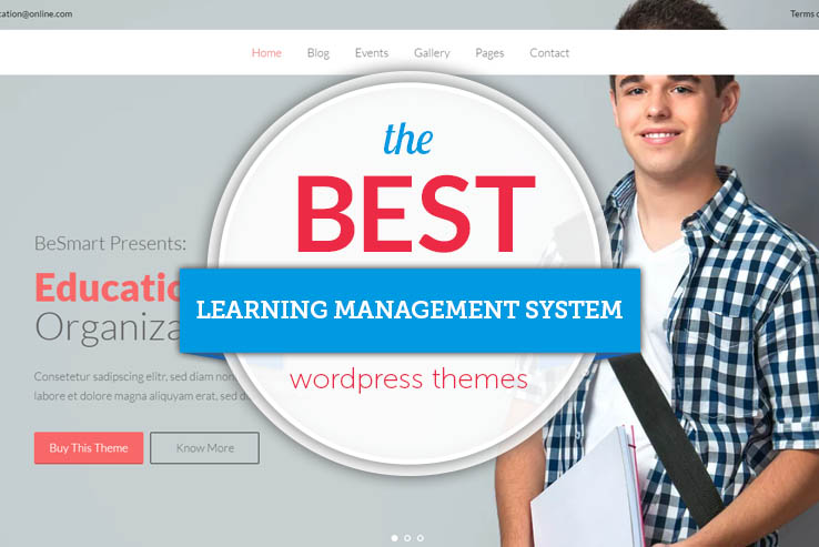 the best LMS wordpress themes