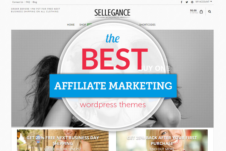 the best affiliate marketing themes