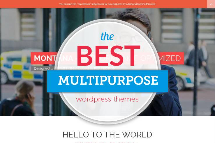 Best Multipurpose Themes