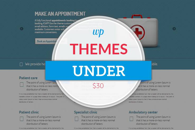 Themes Under $30