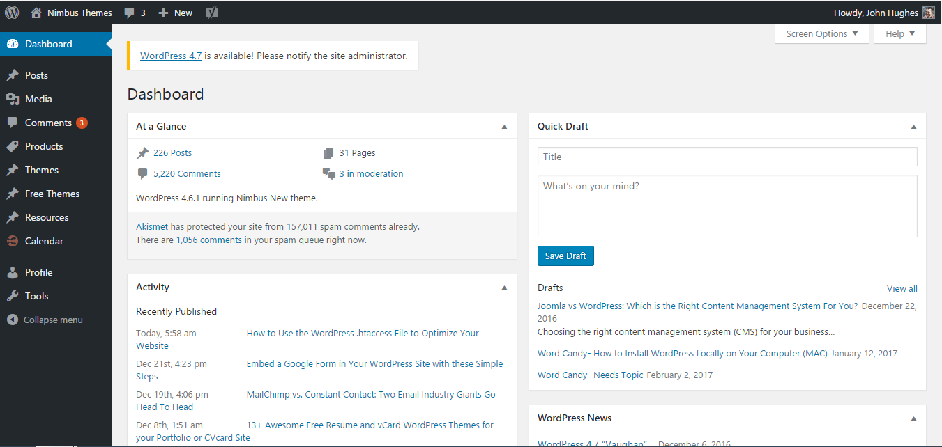 WordPress admin panel.