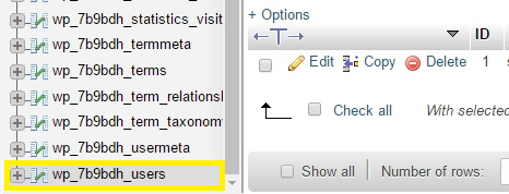 The users table on a WordPress database.