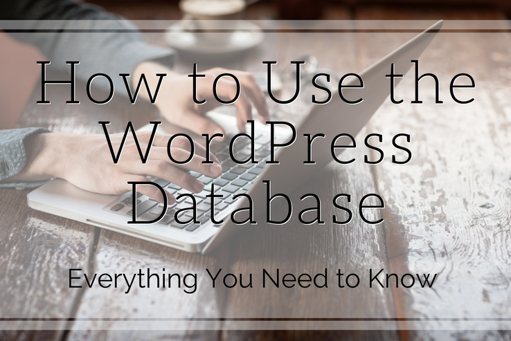 Understand the WordPress Database
