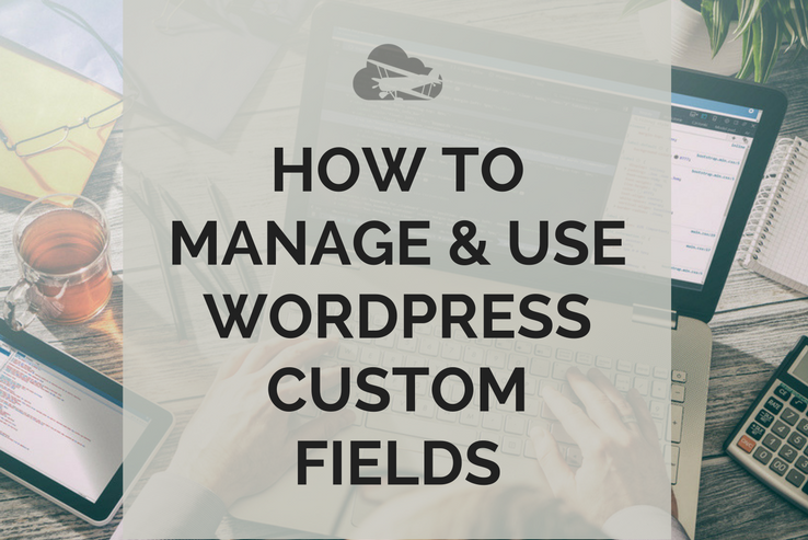 How to Manage and Use WP Custom Fields