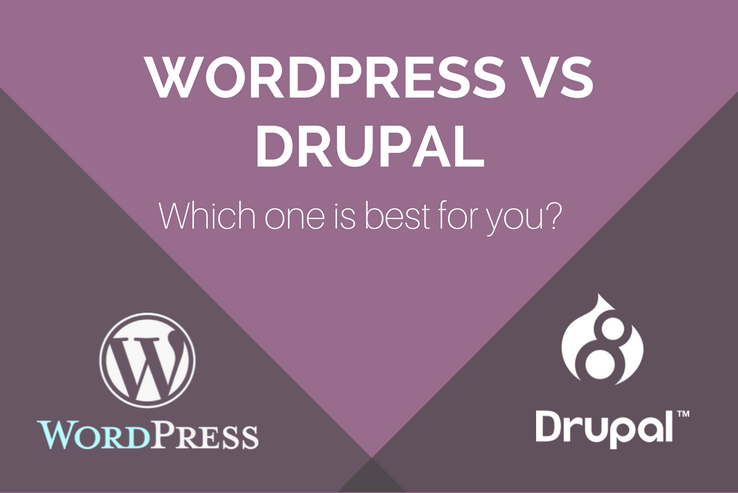 WordPress vs Drupal - Which is right for you?