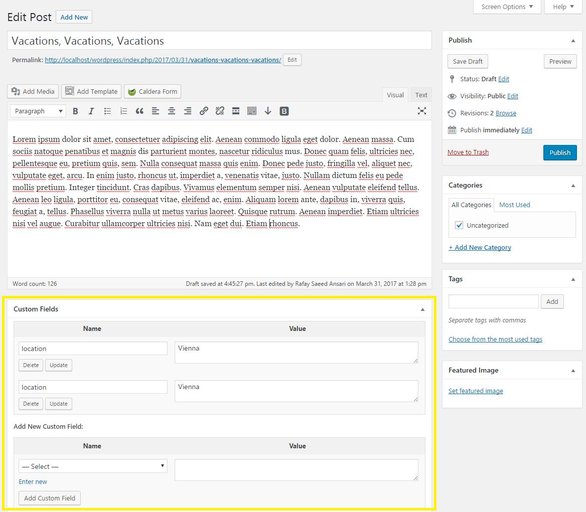 WordPress custom fields enabled