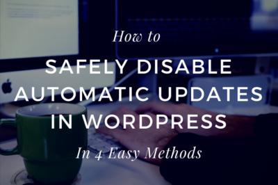 Disable Auto Updates in WordPress