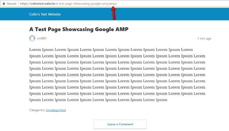 AMP Test Page Example