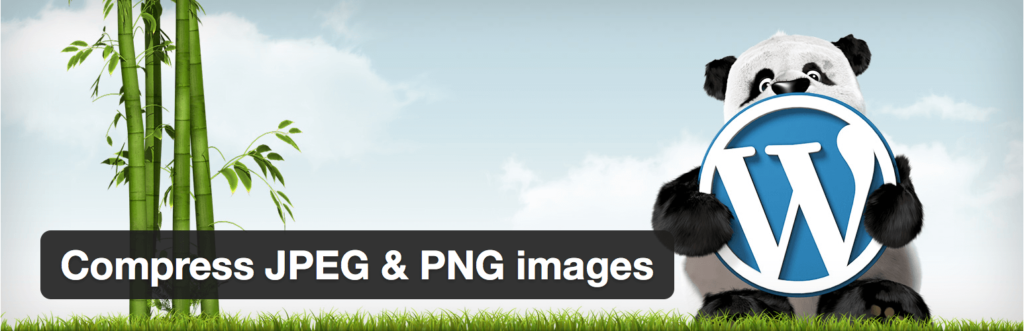 Compress your images with TinyPNG.
