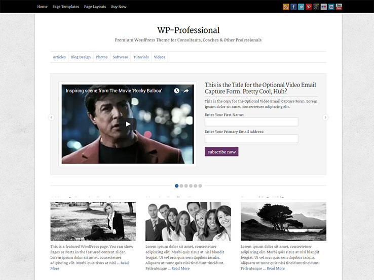 WP-Professional