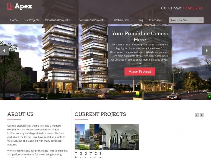 Apex Construction