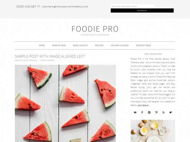 Foodie Pro