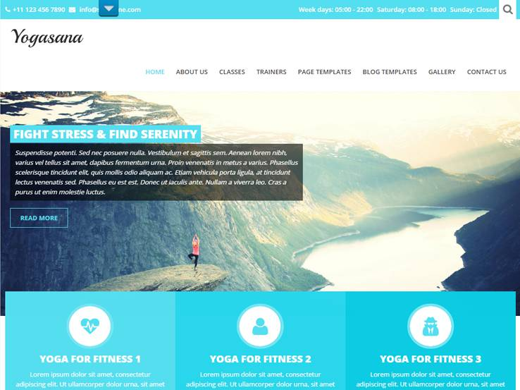 Yogi Lite by SKTThemes