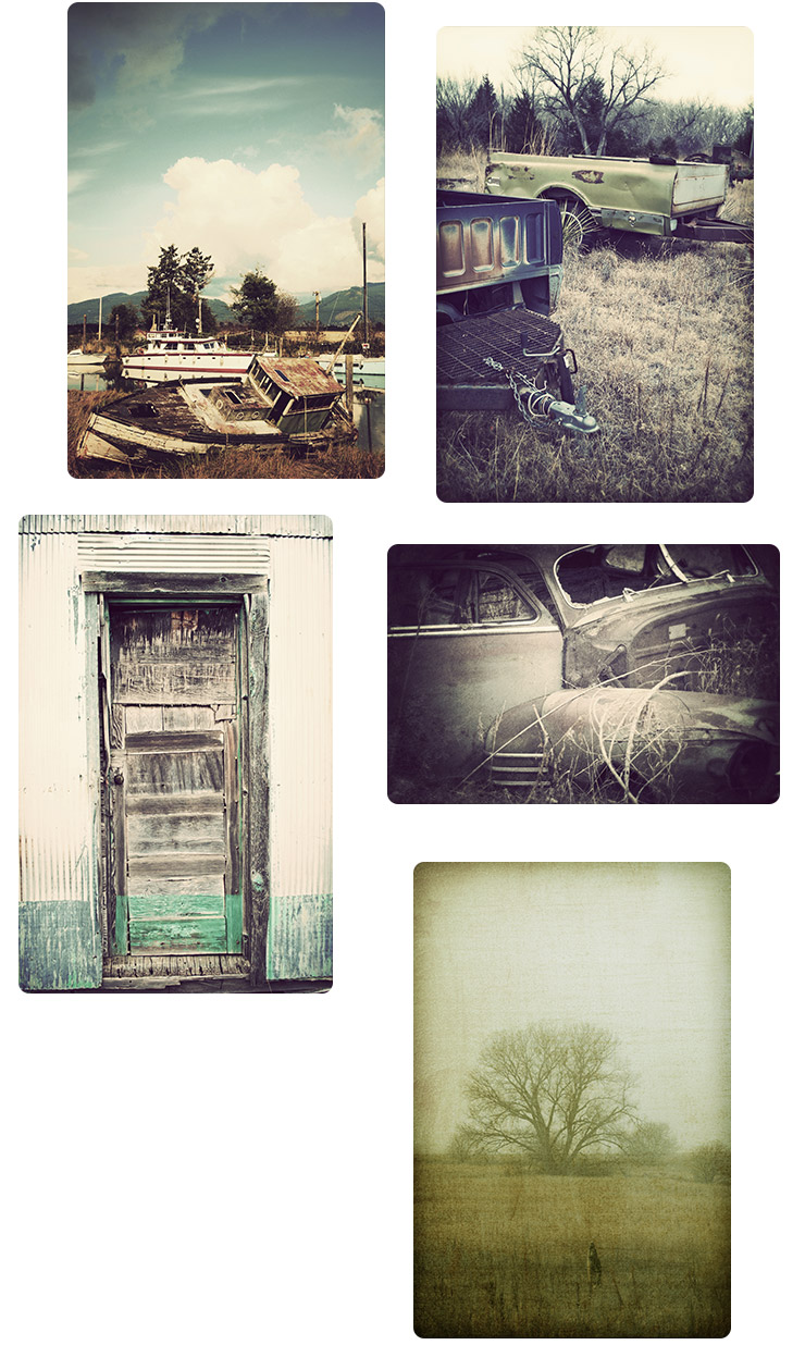 Vintage Filter Nature Photography