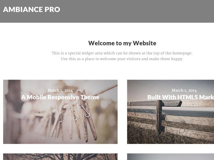 Ambiance Pro