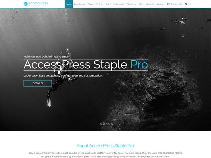 Staple Pro