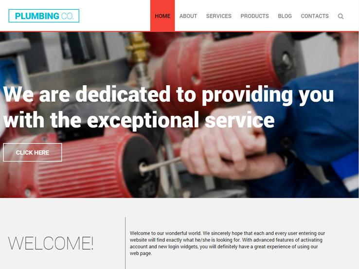 Plumbing Co.