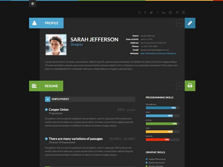 55 best resume themes 2015