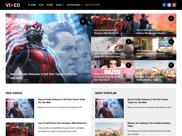 30+ Best WordPress Video Themes