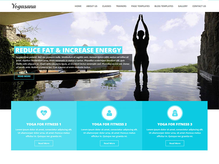 20+ Best Yoga WordPress Themes 2018